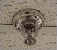 sprinklerhead031308.jpg