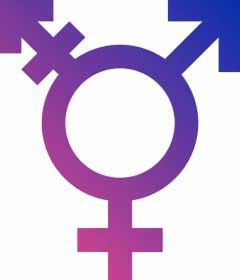 transgendersymbol.jpg