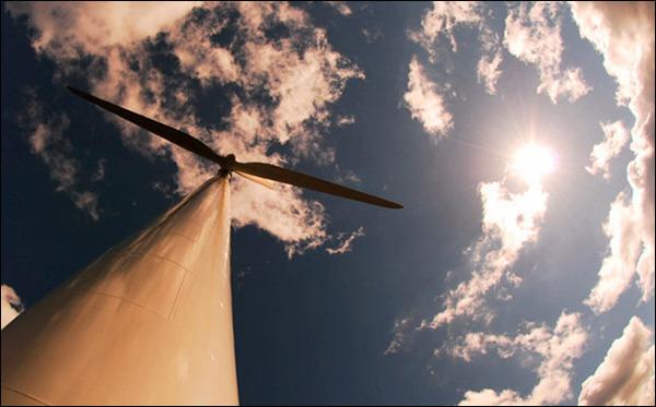 windfall2.jpg