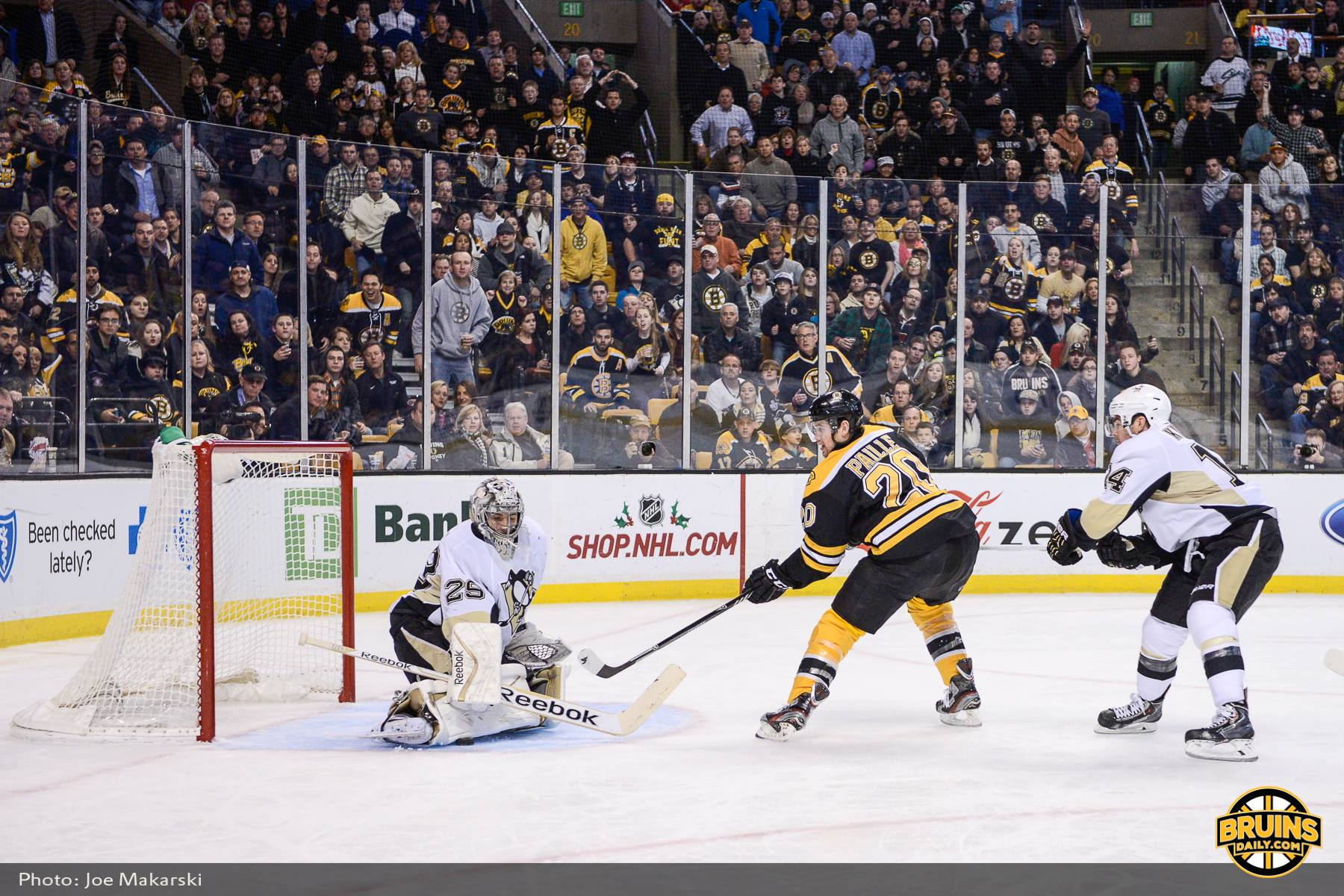 injury bug continues to bite bruins bruins daily. Black Bedroom Furniture Sets. Home Design Ideas