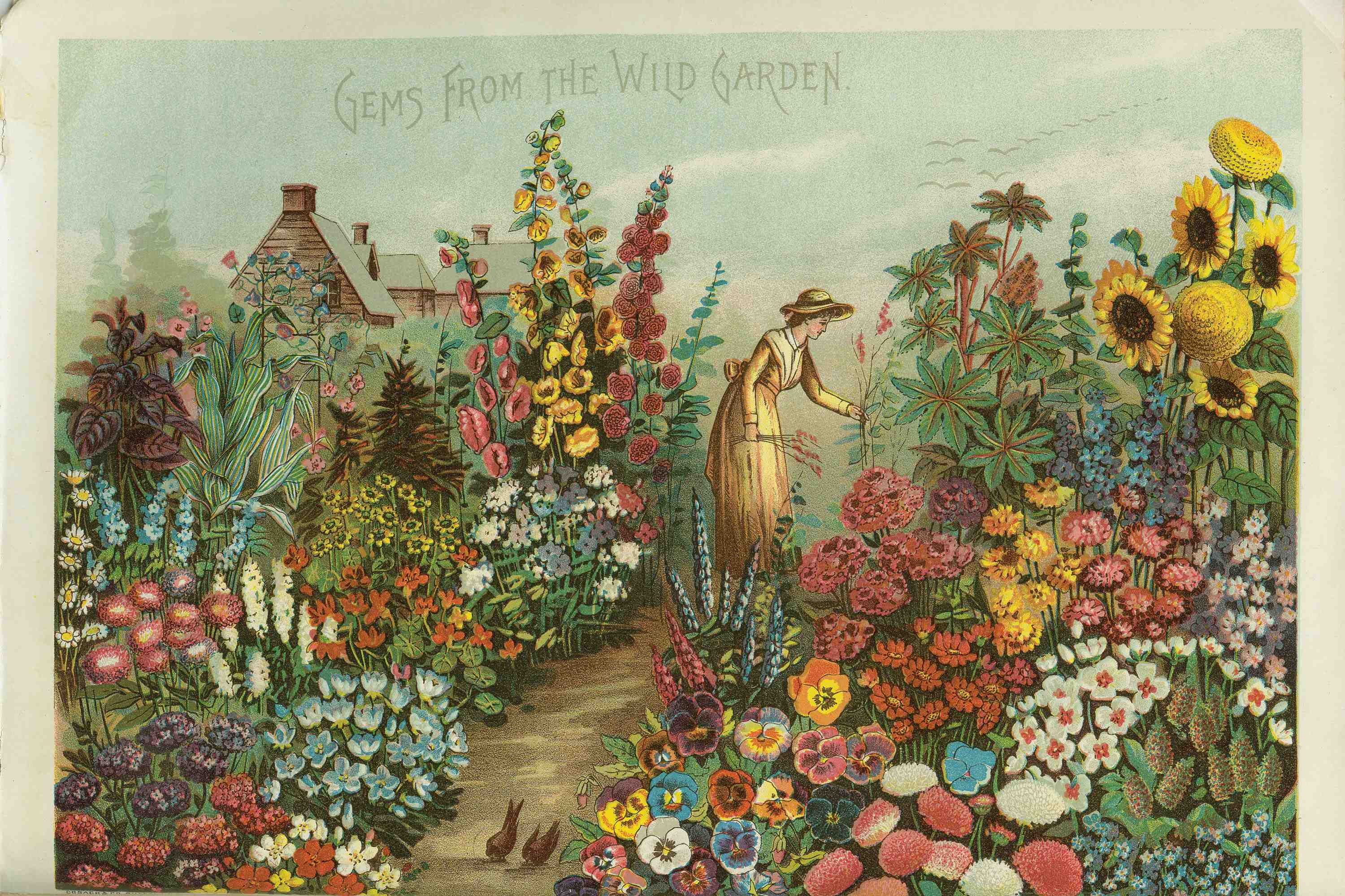 English country garden paintings - English Country Garden Paintings English Garden 1a Jpg