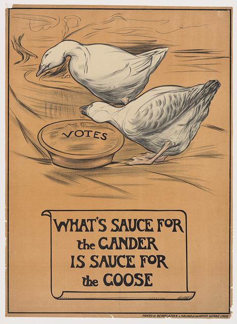 Suffrage 3.jpeg