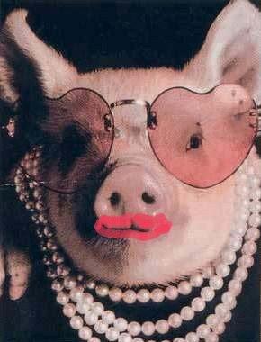 lipstick_on_a_pig.jpg