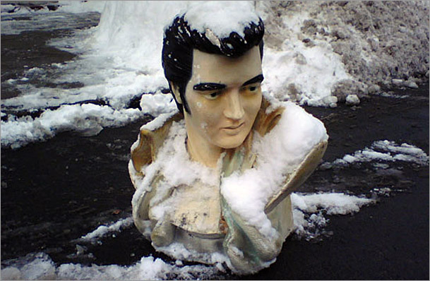 Elvis parking space saver
