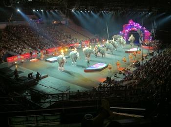 circus8.JPG