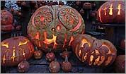 lanternspectacular.jpg
