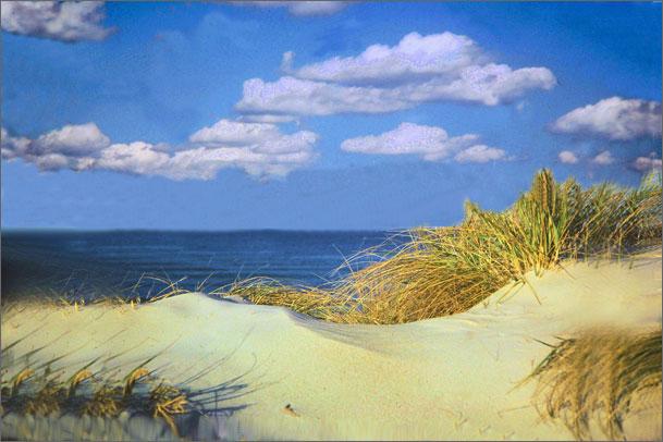 http://www.boston.com/community/photos/raw/Cape_Cod_Sand_Dune.jpg