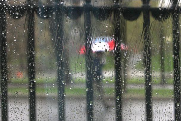 Rain and Pedestrian