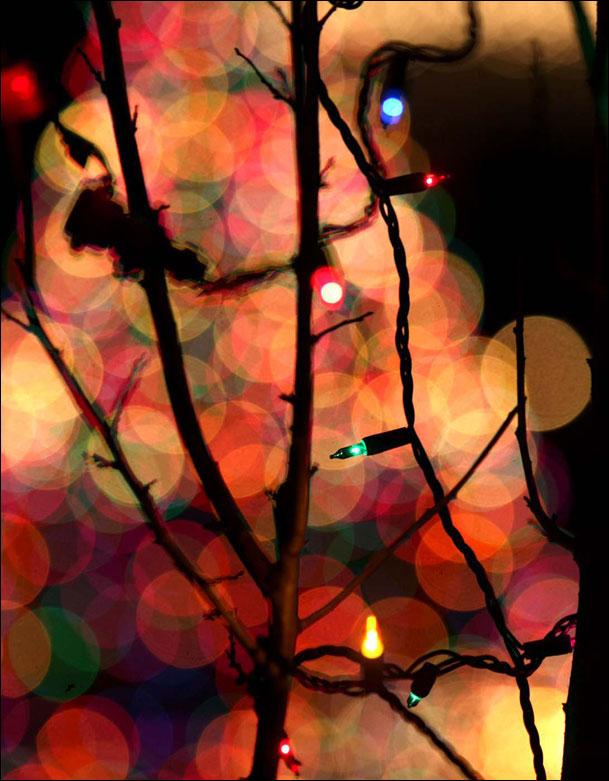 John Tlumacki Lights