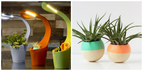 Lamp and plant collage.jpg