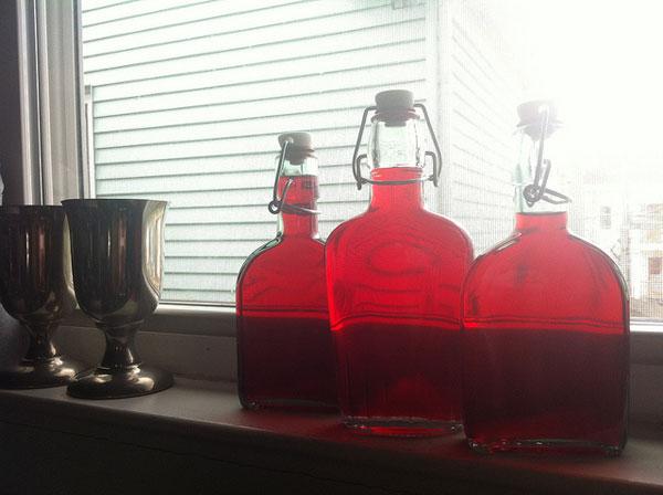 DIY-cranberry-liqueur.jpg