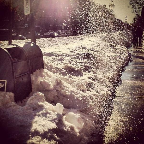 bosnow-nemo-blizzard-instagram-14.jpg