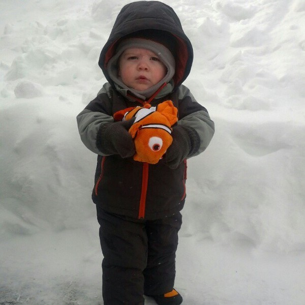 bosnow-nemo-blizzard-instagram-27.jpg