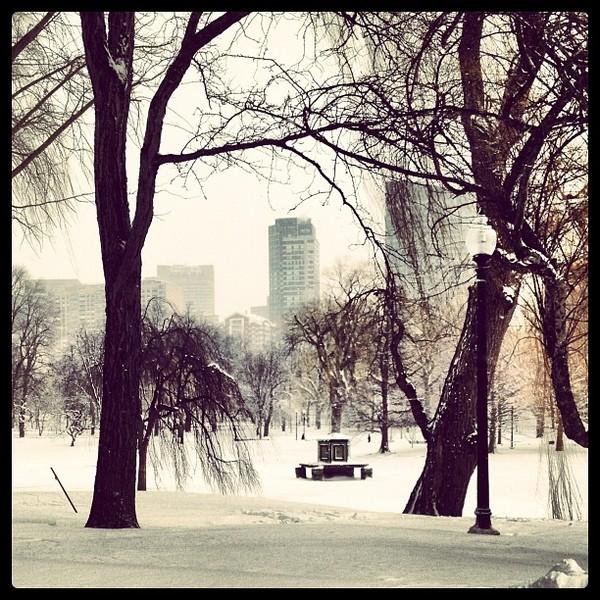bosnow-nemo-blizzard-instagram-4.jpg