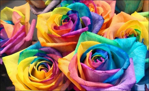 mothers-day-pinterest-rainbow-roses.jpg