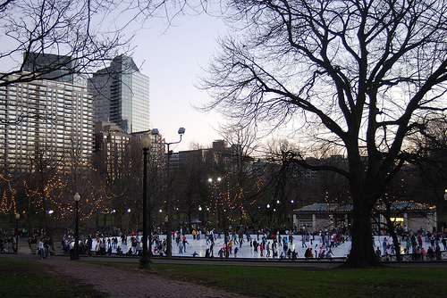 boston ice skating frog pond.jpg