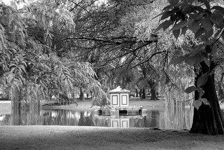 boston public garden.jpg