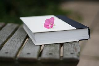 littlebook.jpg
