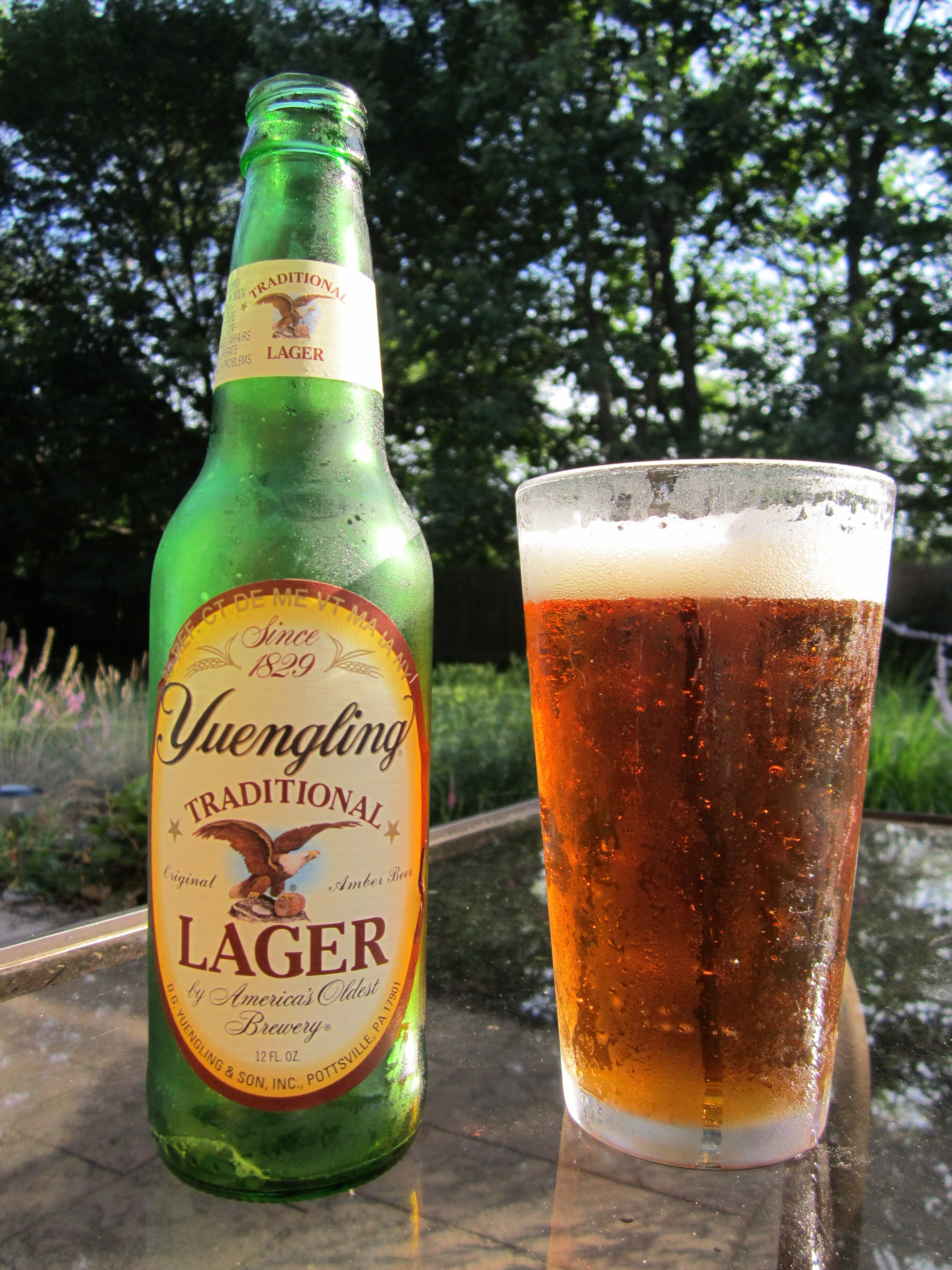Review: Yuengling Traditional Lager - 99 Bottles - Inside ...