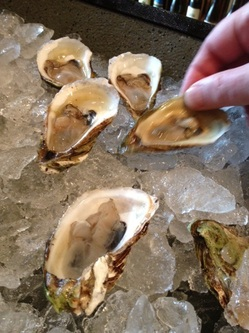 Canada Cup Oysters_UG_Muscadet_102712.jpg