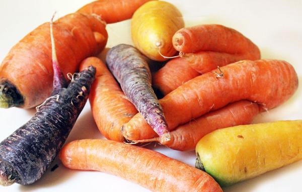 carrots1small.jpg
