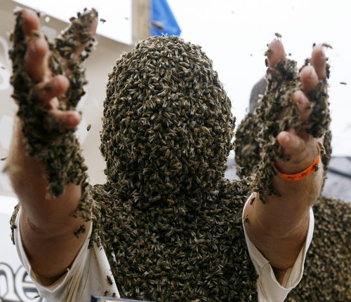 Bee Beard Competition.jpg