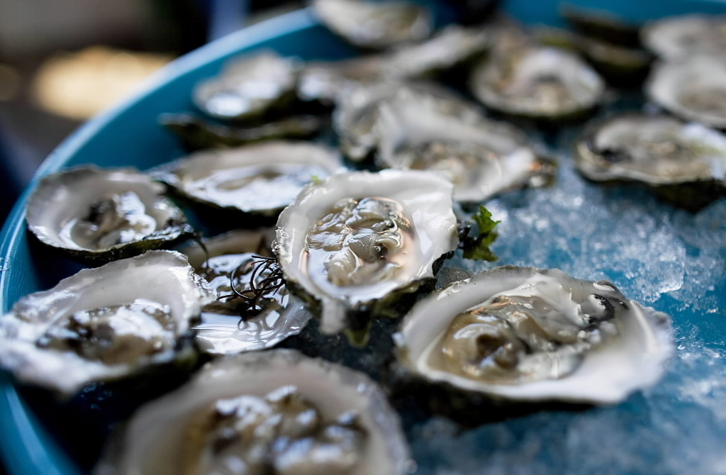 Island Creek Oyster Bar Comes To Kenmore Dishing