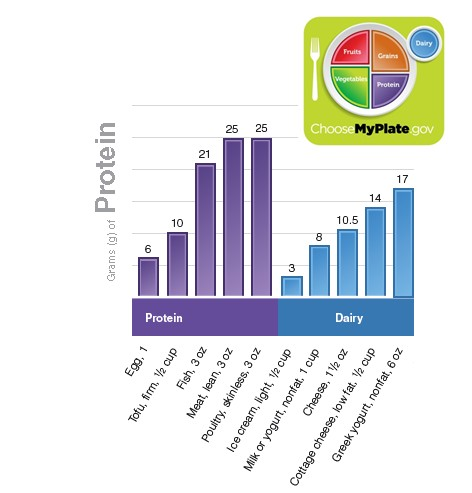 MyPlate Protein.jpg