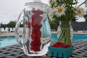 Fruit Infusion Pitcher.jpg