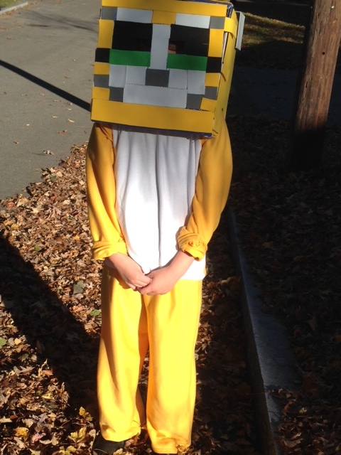 My 9-year-old Liam decided that he would be St&y Cat for Halloween this year. And he wanted me to make the costume. & Stampy Cat Costumes and Other Unexpected Tasks of Parenthood - MD ...