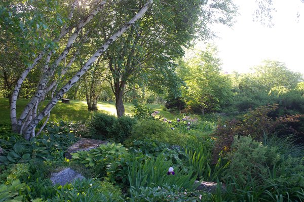 Garden Design New England made in the shade: a garden guide to low-light plantings