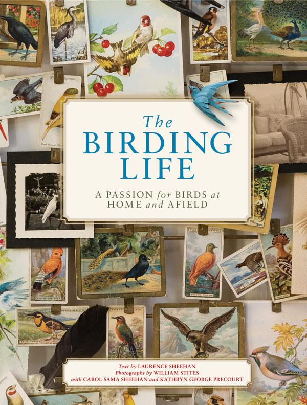 Birding Life cover.jpg