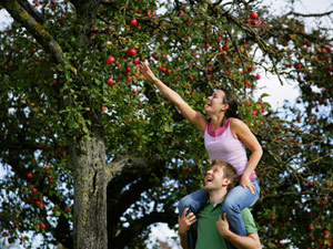 2nd-date-apple-picking-0610-mdn.jpg
