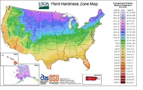 Planting Calendar Zone 9 | Calendar Template 2016