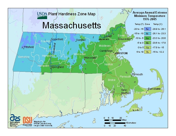 Does Warmer Weather Mean A New Plant Zone For You Boston Com
