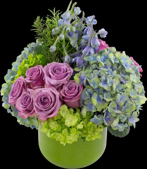 Winston_flowers607.jpg