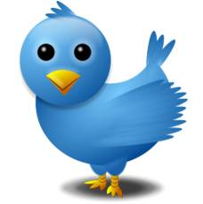 Twitter Bird Marathon