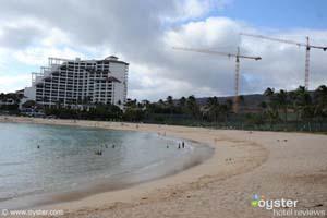OysterPhoto_Oahu beach_fakeout.jpg