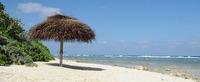 cayman-island-beach-top.jpg