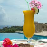 JDSpecial_HarmonyHillVilla_TryallClub_Jamaica.jpg