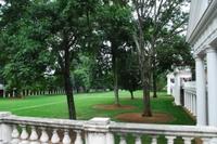 the lawn UVA.jpg
