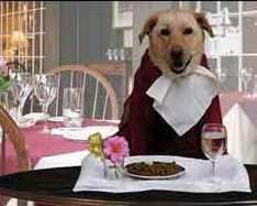 doggydinner-poster.jpg