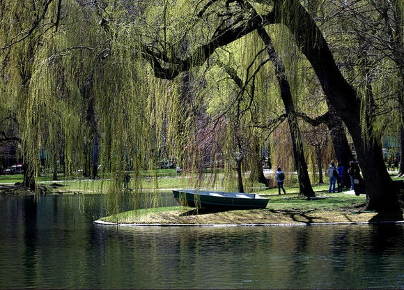 Boston-park.jpg