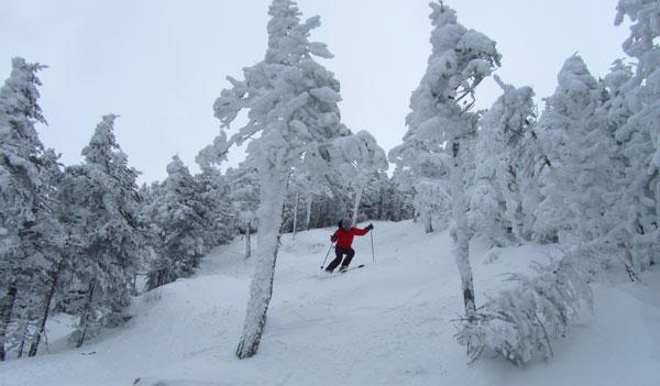 saddleback-skier4.jpg