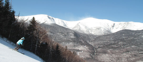 9tucks-wildcat-skier8.jpg